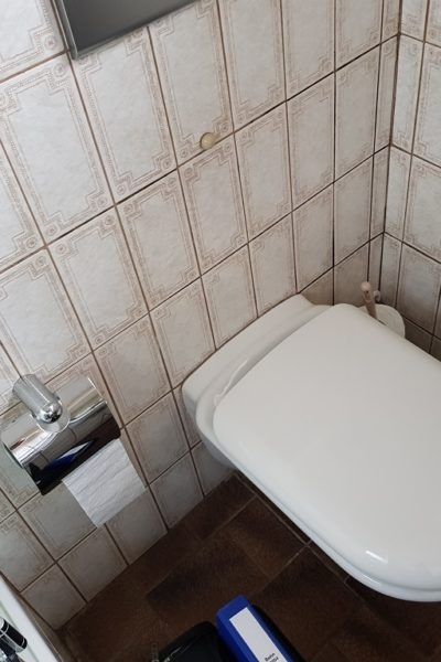 Minibad Toilette Alt