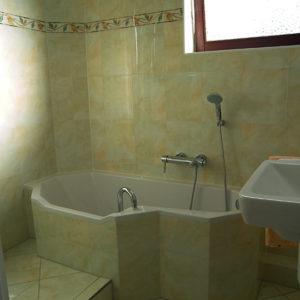 Vollbad mit Wanne und Dusche im Minibad