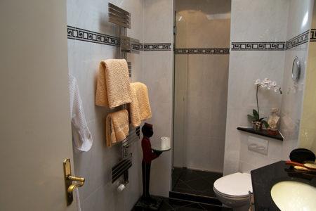 Badbeispiel aus Hamburg Ottensen mit begehbarer Dusche