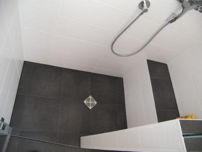 Fliesen Badezimmer Dusche