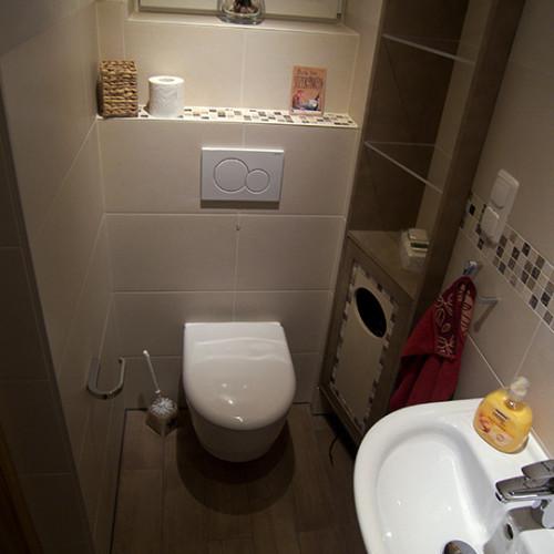 Gäste WC mit ebenerdiger Dusche in Kleiner Grasbrook