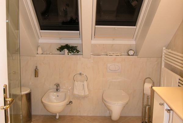 Eingepasste Duschtüren Im Dachgeschoss (Bad 040)