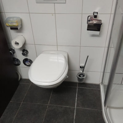 toilette-alt